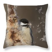 Black-capped Chickadee In Winter Throw Pillow by Mircea Costina Photography