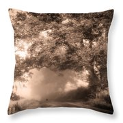 Black Dog On A Misty Road. Misty Roads Of Scotland Throw Pillow by Jenny Rainbow
