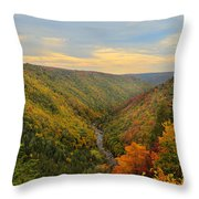 Blackwater Gorge With Fall Leaves Throw Pillow by Dan Friend