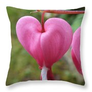 Bleeding Harts Upclose Throw Pillow by Duane McCullough