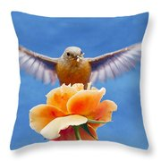 Bless  You Throw Pillow by Jean Noren