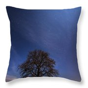 Blessed By The Moon Throw Pillow by Davorin Mance