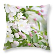 Blooming Apple Tree Throw Pillow by Elena Elisseeva