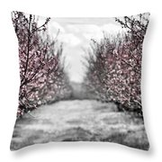 Blooming peach orchard Throw Pillow by Elena Elisseeva