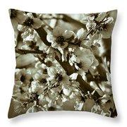 Blossoms Throw Pillow by Frank Tschakert