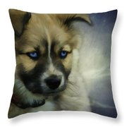 Blue Eyes Throw Pillow by Jacque The Muse Photography
