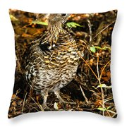 Blue Grouse Throw Pillow by Robert Bales
