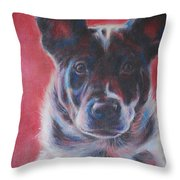 Blue Merle On Red Throw Pillow by Kimberly Santini