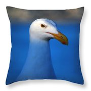 Blue Seagull Throw Pillow by Debra Thompson