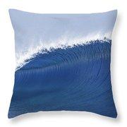 Blue Spinner Throw Pillow by Sean Davey