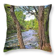 Blue Spring Branch 2 Throw Pillow by Marty Koch