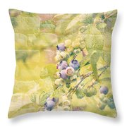 Blueberries Painted on the Wall Throw Pillow by Alanna DPhoto