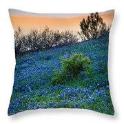 Bluebonnet Shoreline Throw Pillow by Inge Johnsson