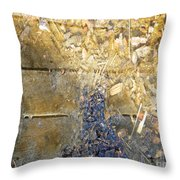 Bluegold Woodshed Flooring Throw Pillow by Brian Boyle