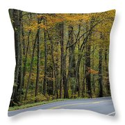 Blueridge Parkway Virginia Throw Pillow by Todd Hostetter