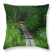 Boardwalk Throw Pillow by Allan Morrison