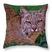 Bobcat Sedona Wilderness Throw Pillow by Bob and Nadine Johnston
