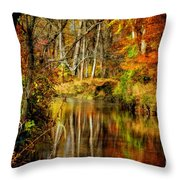 Bob's Creek Throw Pillow by Lois Bryan