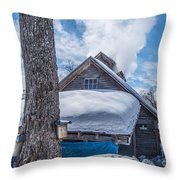 Boiling The Sap Throw Pillow by Alana Ranney