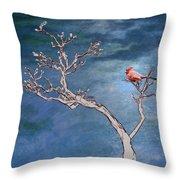 Bonsai Cardinal Throw Pillow by John Haldane