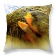 Born To Fly Throw Pillow by Robyn King