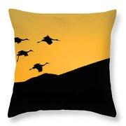 Bosque Del Apache Last Light Throw Pillow by Bob Christopher