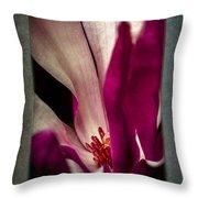 Boston Magnolia Throw Pillow by Eduard Moldoveanu