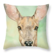 Bound For Glory Throw Pillow by Kimberly Lavelle