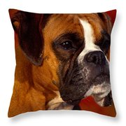 Boxer Throw Pillow by Marvin Blaine