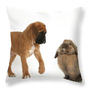 Boxer Puppy With Lionhead-lop Rabbit Throw Pillow by Mark Taylor