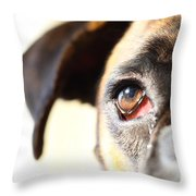 Boxer's Eye Throw Pillow by Jana Behr