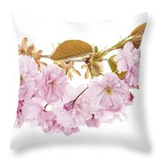 Branch With Cherry Blossoms Throw Pillow by Elena Elisseeva