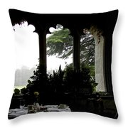 Breakfast At Daybreak Throw Pillow by Charlie and Norma Brock