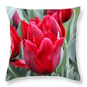 Brilliant Red Tulips in the Garden Throw Pillow by Jennie Marie Schell