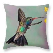 Broad-billed Hummingbird Throw Pillow by Jim Zipp