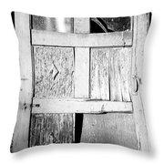 Broken Door Throw Pillow by Cheryl Young