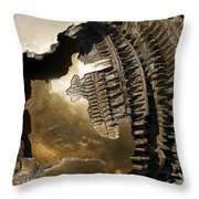 Bronze Abstract Throw Pillow by Stuart Litoff