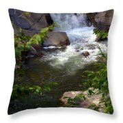 Brook Of Tranquility Throw Pillow by Karen Wiles