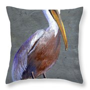 Brown Pelican Throw Pillow by Elaine Hodges