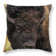 Buffalo Head Throw Pillow by Sara  Raber