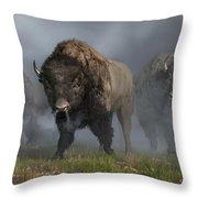 Buffalo Vanguard Throw Pillow by Daniel Eskridge