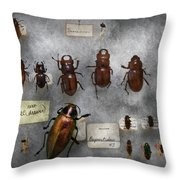 Bug Collector - The insect Collection  Throw Pillow by Mike Savad