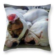Bulldog Bliss Throw Pillow by Karen Wiles