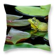 Bullfrog Throw Pillow by Jim Zipp