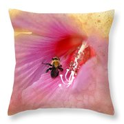 Bumble Bee Bliss Throw Pillow by Betty LaRue
