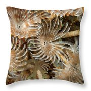 Bunch Of Dusters Throw Pillow by Jean Noren