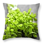 Bunch Of Fresh Oregano Throw Pillow by Elena Elisseeva