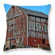Bush And Bull Roadside Barn Throw Pillow by Paul Ward