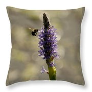 Busy Bee Throw Pillow by Donna Stiffler
