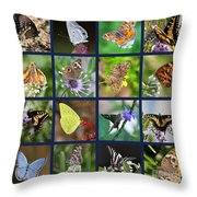 Butterflies Squares Collage Throw Pillow by Carol Groenen